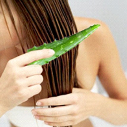 Aloe-Vera-and-Olive-Oil-Hair-Mask